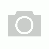 ASG - Pro Leather Power Lifting Belt