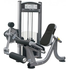 Healthstream Ultimate Leg Extension Machine
