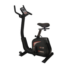 York LC-UB Light Commercial Upright Bike